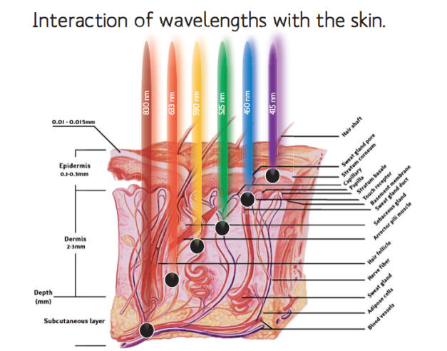 wave_lenght_interaction_skin